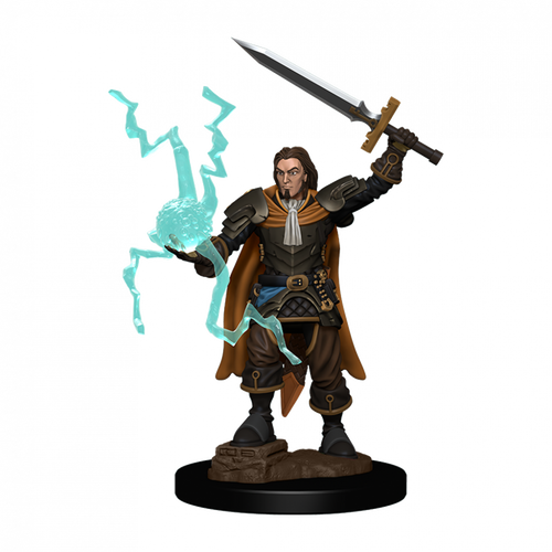 Pathfinder Battles Premium Painted - Human Cleric Male
