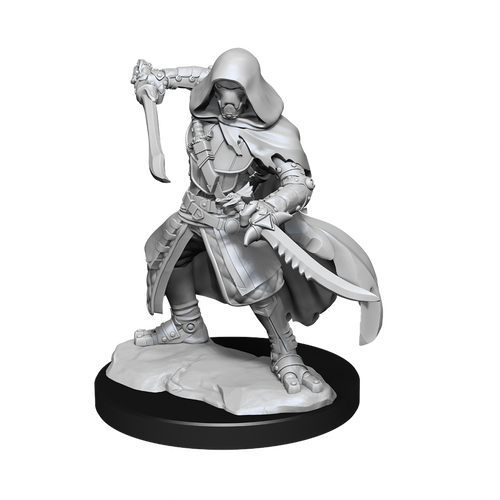 Dungeons & Dragons Nolzur's Marvelous - Warforged Rogue