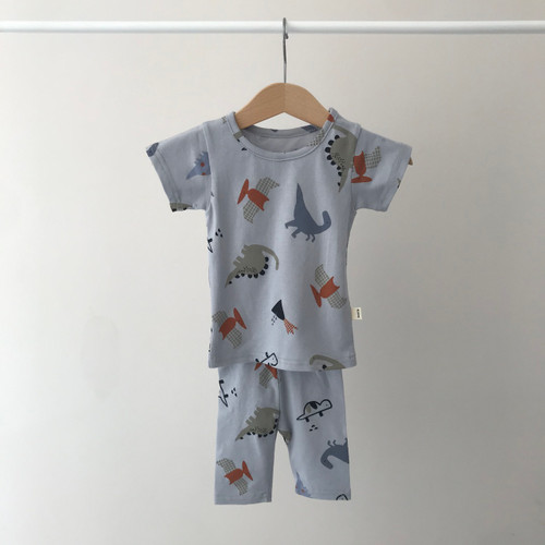 Loungewear, Set,  Dino,Pjs, Boy, Girl, Slim Fit, Long bottoms, Short Sleeve top, Soft, White Gray