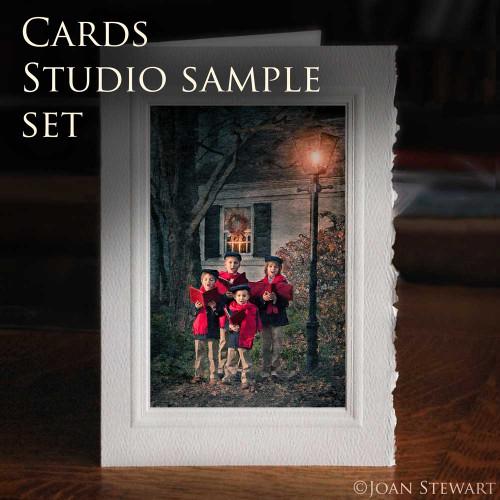 Fine Art Cards - 15  Studio Samples