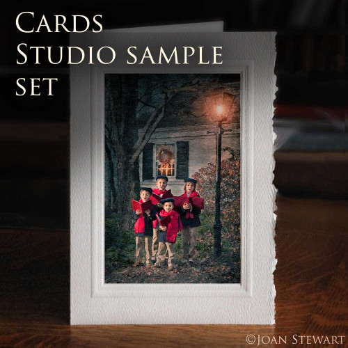 Fine Art Cards - 15  Studio Samples