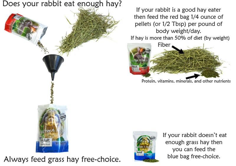 Adult Rabbit Food (PROFESSIONAL)