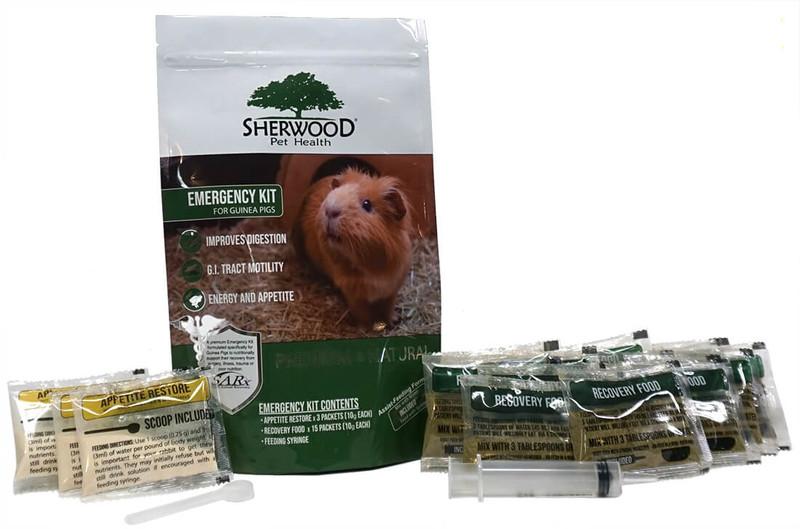 Emergency Kit for Guinea Pigs
