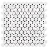 """Bianco Dolomiti Marble 1"""" Penny Round Mosaic Tile Polished"""