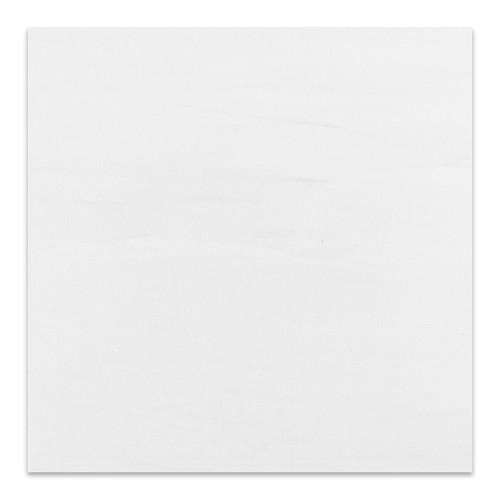 Bianco Dolomiti Marble Italian White Dolomiti 12x12 Marble Tile Polished