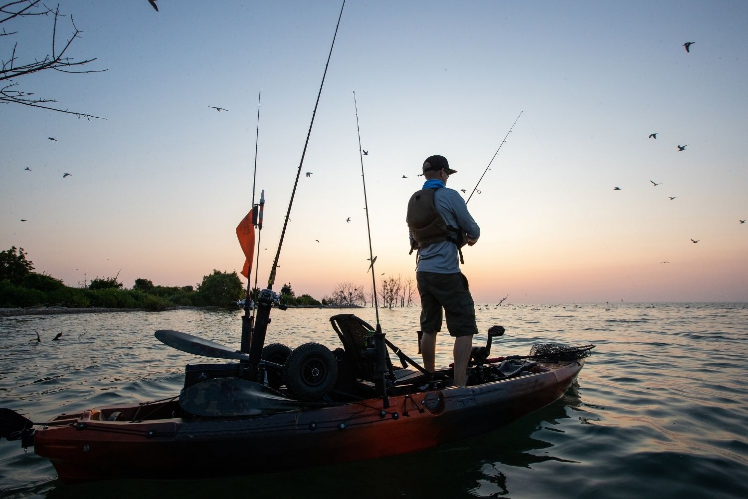 How To Choose the Right Outboard Motor for Your Watercraft