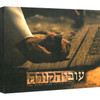 The Other Side of the Cross DVD