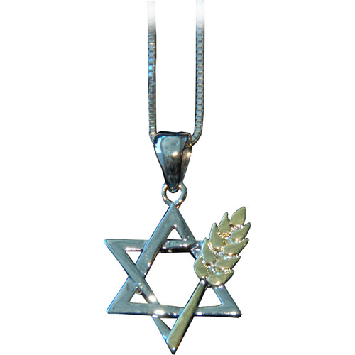 Star of David with Wheat Necklace