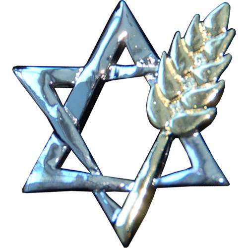 Star of David with Wheat Lapel Pin