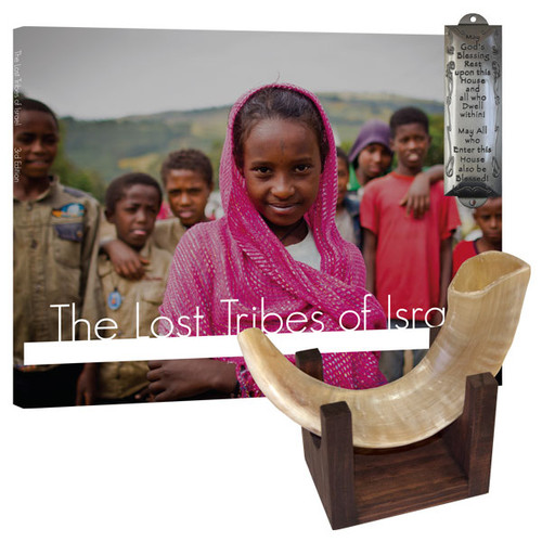 Ram's Horn Shofar and Stand Package (2033)