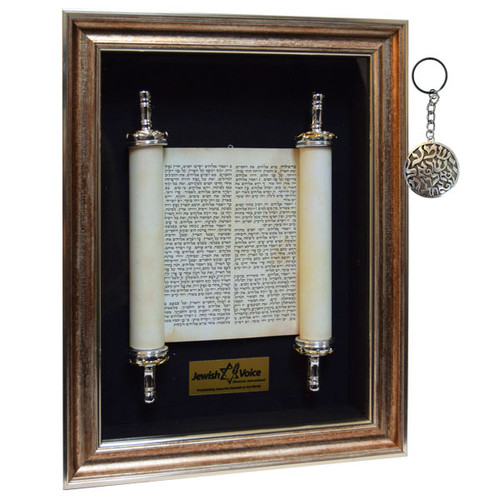 Torah Scroll Package