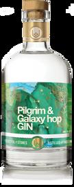 Pocketful of Stones Pilgrim & Galaxy Hop Gin