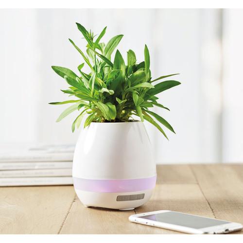 Vază pentru flori cu lumină ambientală şi boxă wireless.