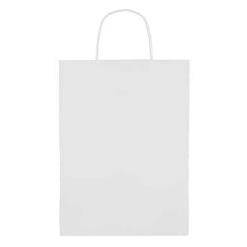 Paper Large - Gift paper bag large size