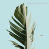 Banana Arbor Leaf Botanical Modern Framed Artwork Portrait Canvas Print