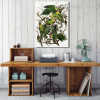Carolina Parakeet Bird Modern Framed Portmanteau Photo Canvas Print for Room Wall Flourish