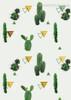 Cactus Spear Botanical Contemporary Framed Artwork Image Canvas Print