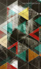 Albert Einstein Abstract Figure Modern Framed Painting Shot Canvas Print