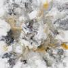 Colorific Imagination Abstract Contemporary Framed Vignette Portrait Canvas Print