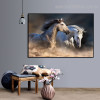 Two Equines Animal Contemporary Framed Effigy Picture Canvas Print for Wall Disposition