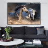 Two Equines Animal Contemporary Framed Effigy Picture Canvas Print for Wall Outfit