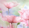 Pink Poppies Abstract Watercolor Flowers Painting Print