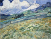 Landscape Saint Rémy Van Gogh Reproduction Framed Painting Image Canvas Print