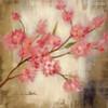 Sakura Flowers Painting Canvas Print
