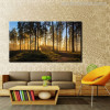 Sunrise Forest Painting Canvas Print for Wall Decor