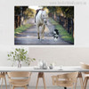 A Dog Leads a Horse Modern Picture Print for Wall Decor