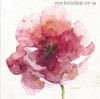 Red Poppy Abstract Watercolor Floral Painting Print