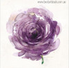 Purple Rosette Abstract Modern Watercolor Botanic Painting Print