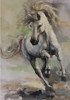 Running Horse Abstract Animal Modern Oil Painting Canvas Print