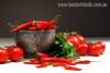 Red Chilli Food & Beverage Modern Portrait Canvas Print
