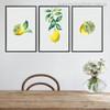 Lemon Slices Modern Botanical Food and Beverages Painting Print for Dining Room Wall Garniture