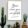 Planted Modern Quotes Canvas Art Print for Room Wall Beautify