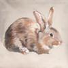 Rabbit Abstract Modern Animal Wall Art Print
