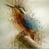 Hued Kingfisher Abstract Watercolor Animal Painting Canvas Print
