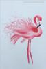 Flamingo Bird Animal Abstract Modern Wall Art Print