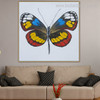 Colorific Butterly Animal Abstract Modern Framed Painting Photo Canvas Print for Room Wall Onlay