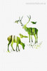 Green Deers Nature Animal Nordic Framed Painting Picture Canvas Print