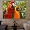 Two Macaws Contemporary Nature Bird Painting Photo Canvas Print for Lounge Room Wall Tracery
