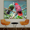 Eclectus Parrot Bird Modern Nature Effigy Photo Canvas Print for Room Wall Trimming