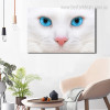 White Moggy Animal Contemporary Framed Painting Photo Canvas Print for Lounge Room Wall Garnish