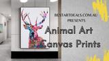 Animal Art Canvas Prints Video