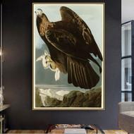 John James Audubon Prints