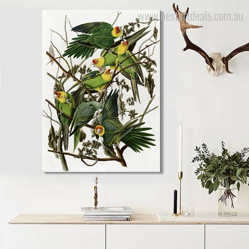 Carolina Parakeet Bird Modern Framed Portmanteau Photo Canvas Print for Room Wall Decor