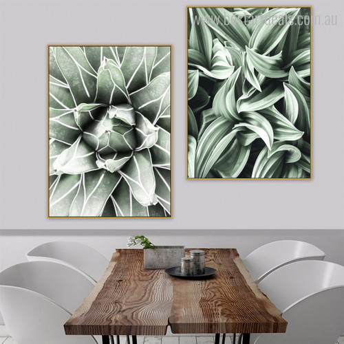 Cactus Leaves Botanical Modern Framed Portraiture Photo Canvas Print for Dining Room Wall Onlay