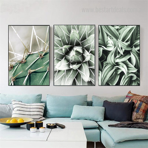 Cactus Worts Botanical Contemporary Framed Resemblance Picture Canvas Print for Room Wall Decoration
