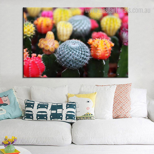 Cactus Flowers Botanical Contemporary Framed Painting Image Canvas Print for Room Wall Assortment